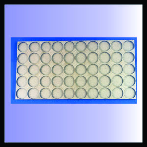 Square movement tray for 25mm rounds with 5 ranks of 10