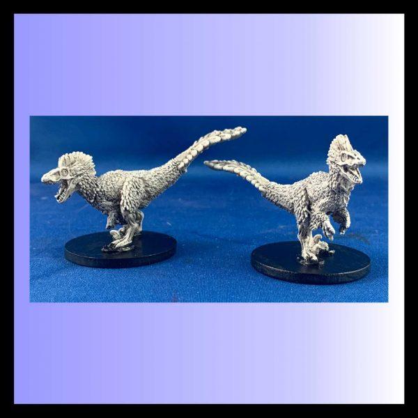 Feathered Velociraptors